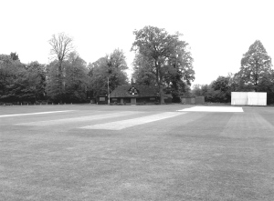 May - the cricket pitch that is close to Farnham Castle