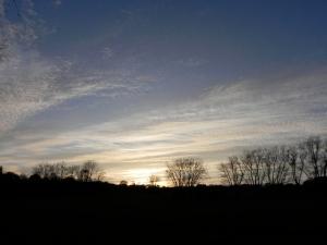 Evening light over Farnham - the field