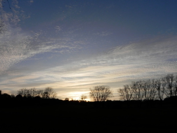 evening light over Farnham