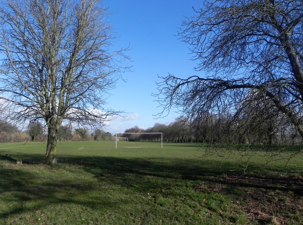 Farnham Park -  football pitch