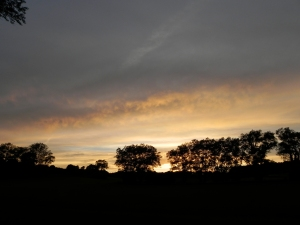 Evening sky - Farnham